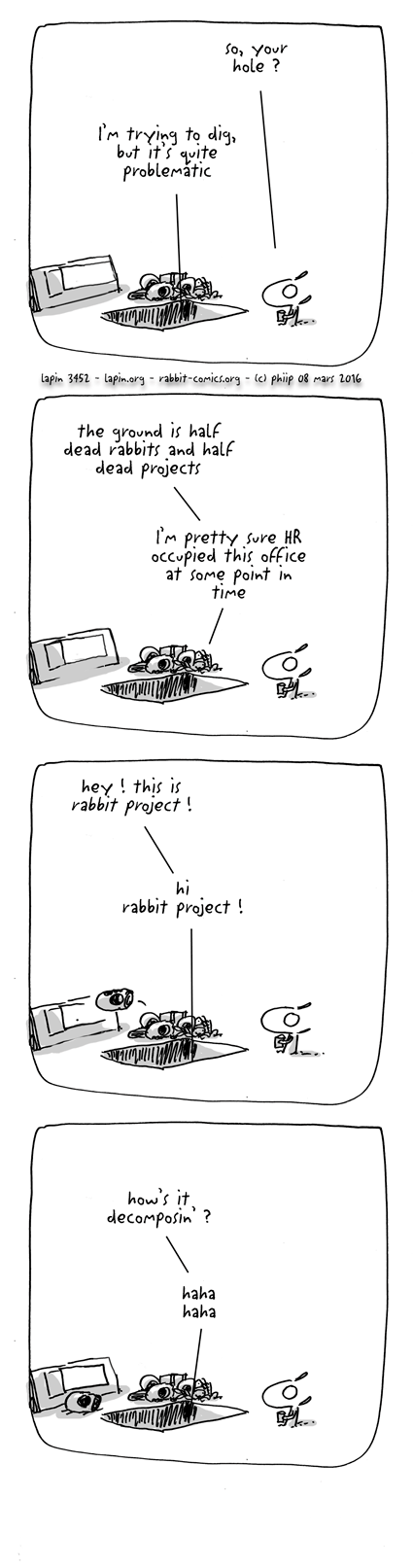 rabbit project